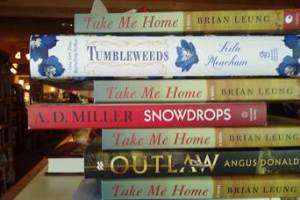 Book Spine Poetry by Chris Houser
